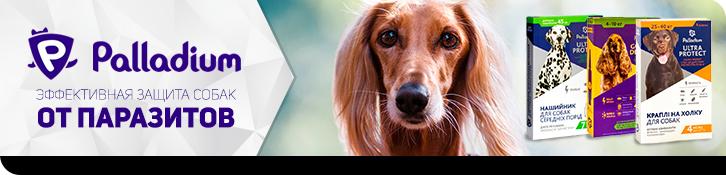 Palladium - средство по защите собак от блох, клещей, вшей, власоедов