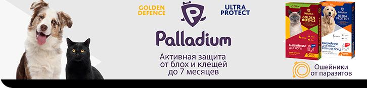 palladium_collars