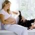 Кошка в квартире и женская беременность