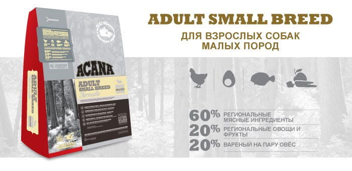 Recovery royal canin цена