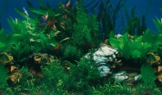 Фон для аквариума AD-633
