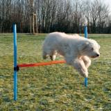 Trixie Сборный барьер 129х115 см, 3,3 см
