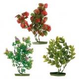 Растения, 6 шт (средние)