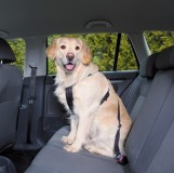 Пояс-шлея безопасности д/соб.в авто L 70-90см