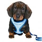 Шлея-жилетка с поводком для щенков и мелких собак (26-34 см / 10 мм, 2 м) голубая