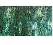 Trixie Фон д/террариума двусторонний 60х150 см
