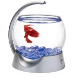 Tetra Betta Bowl 1,8 л