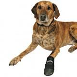 Trixie L защитные ботинки
