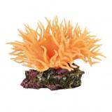 Trixie Анемона морская оранжевая