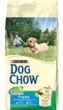 Dog Chow Puppy Large Breed. С индейкой, корм для щенков крупных пород 14 кг
