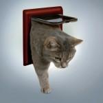 """дверца для кота """"Classic""""(бордовая)"""