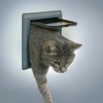 """дверца для кошек """"Classic""""(серая)"""