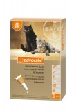 Bayer Advocate для кошек весом до 4 кг, 1 пипетка