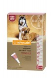 Advocate для собак весом от 10 до 25 кг, 1 пипетка