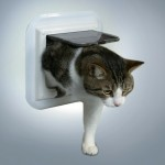 Trixie дверца для кошек (белая,для стекл.двери)