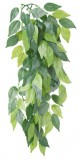 Trixie Растение Ficus шелк. 20*30см