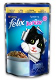 Felix Felix (Фелікс).З куркою для кошенят20х100г