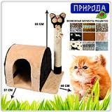 """Природа Дряпка """"Кошка дом"""""""
