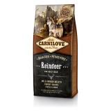 Carnilove Сухой корм для взрослых собак всех пород Adult Raindeer (12 кг) с мясом северного оленя