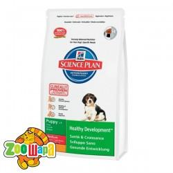 Hill's Сухой корм для щенков средних пород Science Plan Puppy Healthy Development для здорового иммунитета (12 кг) с ягненком и рисом