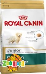 Royal Canin (Роял Канин) Сухой корм для щенков породы голден ретривер Golden Retriever Junior (1 кг)