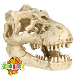 Trixie Набор черепов животных, 6 шт