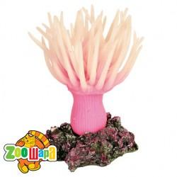 Trixie Анемона морская розовая