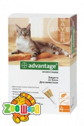 Bayer Advantage для котов до 4 кг, 1 пипетка