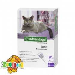 Bayer Advantage 80 для котов более 4 кг, 1 пипетка