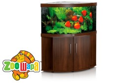 JUWEL Aquarium TRIGON 350, коричневый