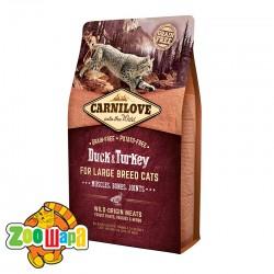 Carnilove Сухой корм для взрослых крупных кошек Duck & Turkey Large Breed (2 кг) с уткой и индейкой