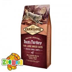 Carnilove Сухой корм для взрослых крупных кошек Duck & Turkey Large Breed (6 кг) с уткой и индейкой