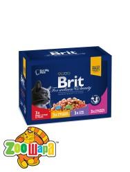 Brit Premium Влажный корм Cat pouch Семейная тарелка Ассорти 4 вкуса для кошек 1,2 кг (12шт х 100g)